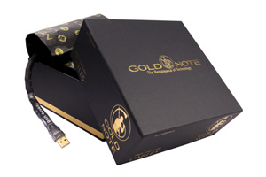 Ingrandisci immagine Gold Note Firenze Silver USB
