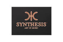 Logo Synthesis